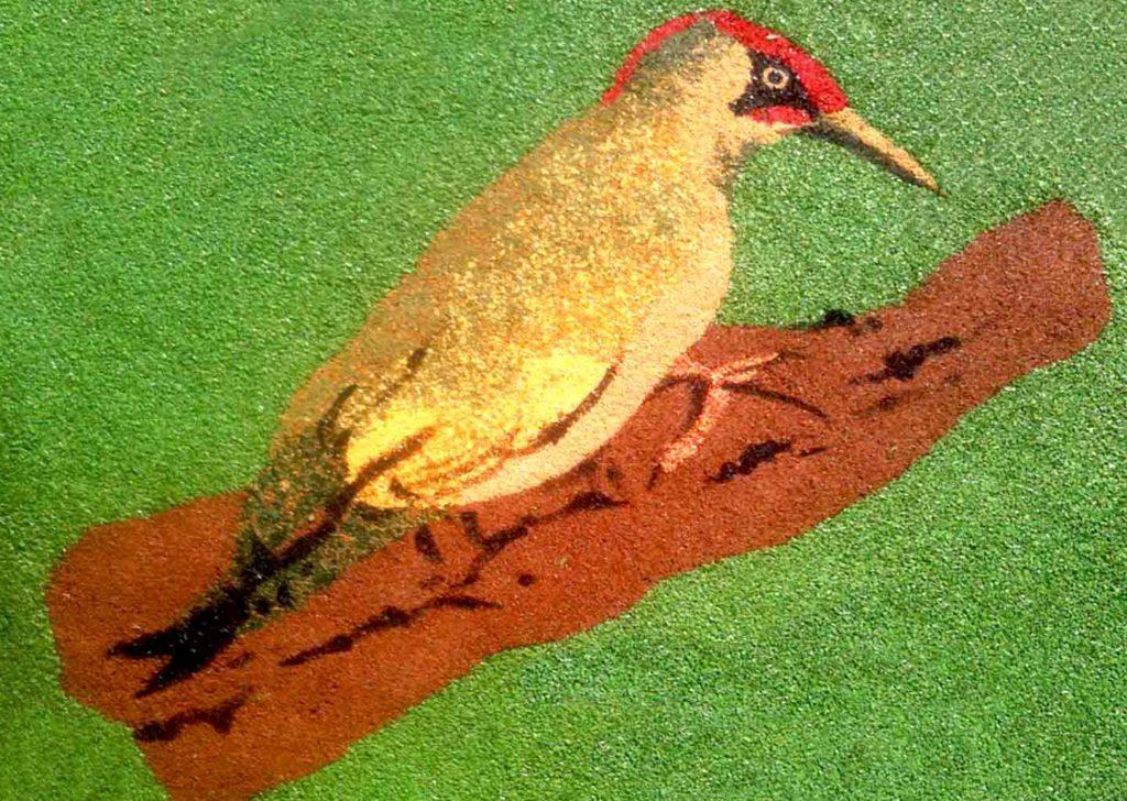 55-jeux-sol-oiseaux