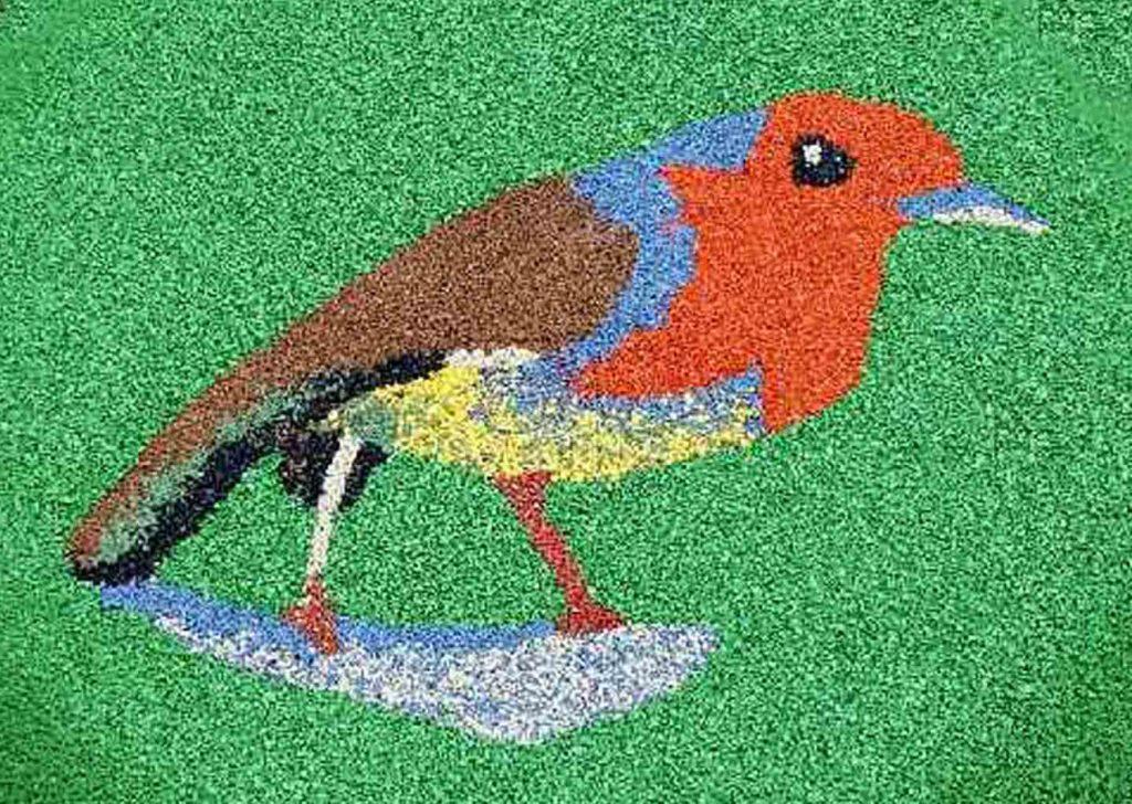 55-sol-oiseaux